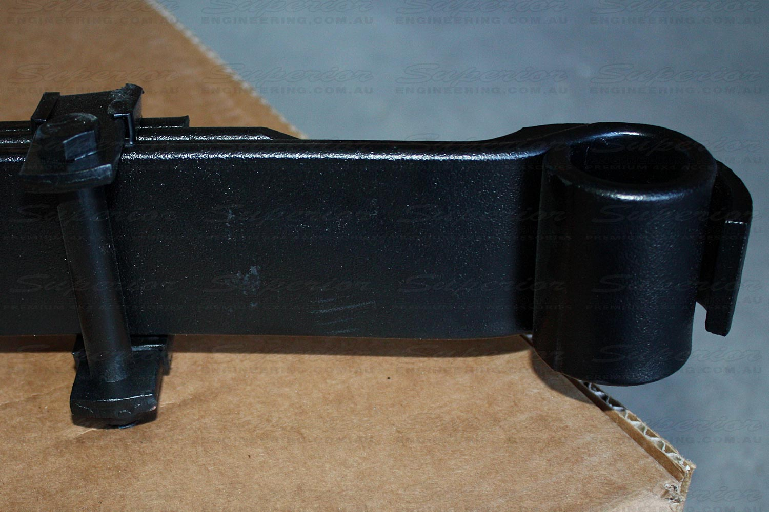 End view of the pin mount end of the leaf spring
